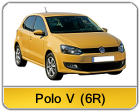 Polo_V_6R.png