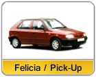 Felicia_Pick_Up.png